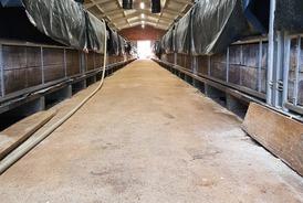 Isolation d'un hangar à veaux à Salviac